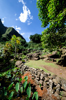 Iao Valley State Park-24