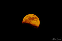 Supermoon Rising-11
