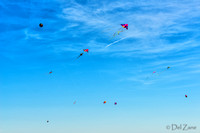 Fort Casey Kite Day