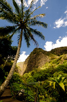 Iao Valley State Park-17