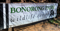 The Bonorong Wildlife Sanctuary